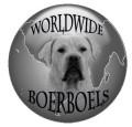 Boerboels